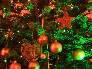 800px-Christmas_tree_2008